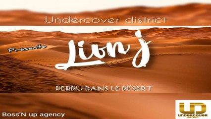Lion J - Perdu Dans Le Désert