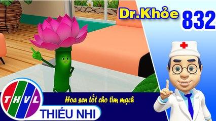 Dr. Khỏe - Tập 832: Hoa sen tốt cho tim mạch