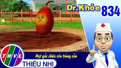 Dr. Khỏe - Tập 834: Hạt gấc chữa côn trùng cắn