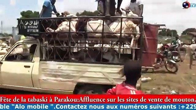 TABASKI 2020 A PARAKOU : Affluence sur les site de vente de moutons