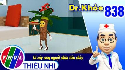 Dr. Khỏe - Tập 838: Lá cây cơm nguội chữa tiêu chảy