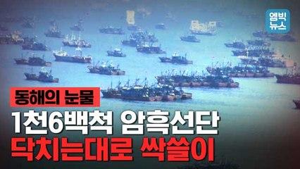 [엠빅뉴스] 공포의 암흑선단이 동해를 뒤덮었다. 동해가 울고 있다!
