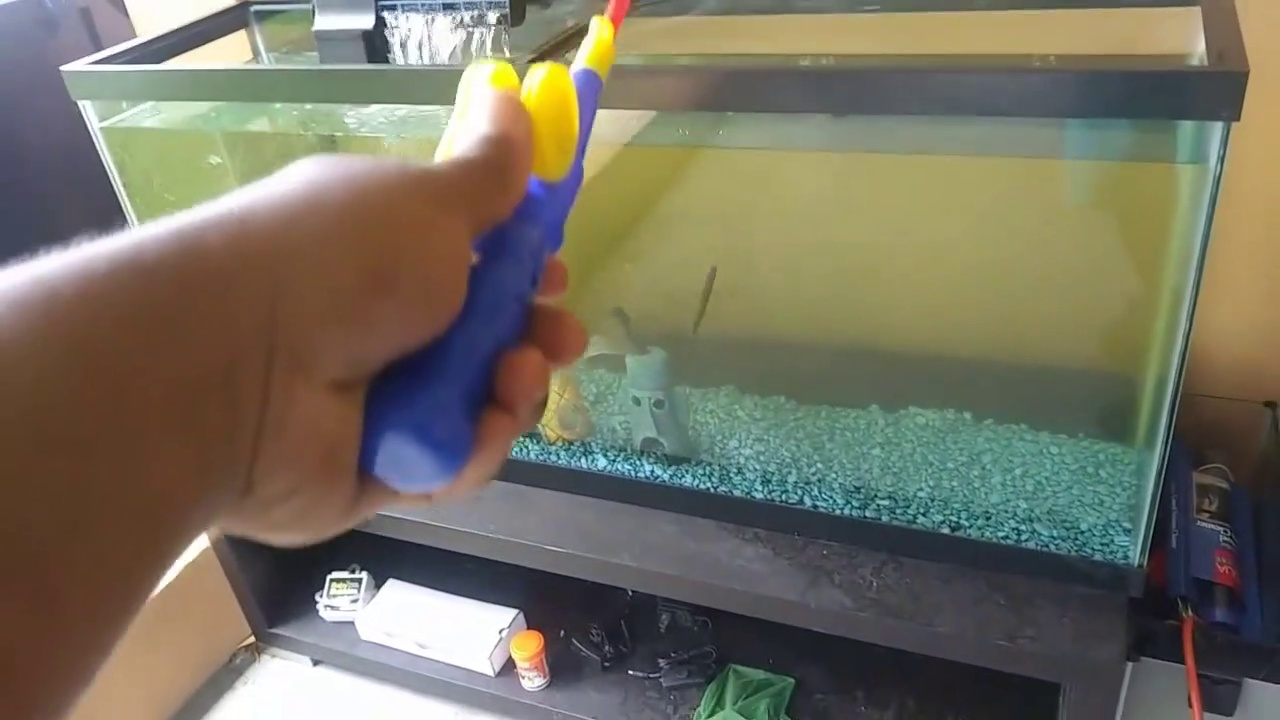 BASS Fishing inside AQUARIUM!