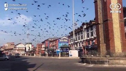 कुलगाम में बीजेपी सरपंच की हत्या, 40 घंटे में दूसरी वारदात