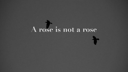 Keir - Rose