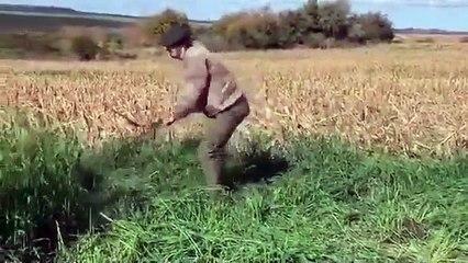 Cavani falcia l'erba nei campi