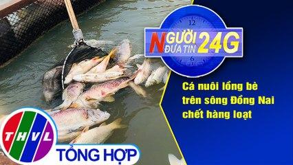 Người đưa tin 24G (18g30 ngày 30/07/2020) - Cá nuôi lồng bè trên sông Đồng Nai chết hàng loạt