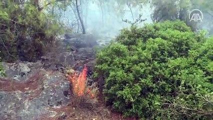 Suriyeli Hasan el-Hasan, İzmir'deki yangını söndürmek için avuçlarıyla toprak taşıdı - İZMİR