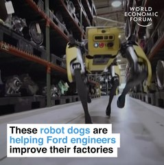These robot dogs are helping Ford engineers improve their factories