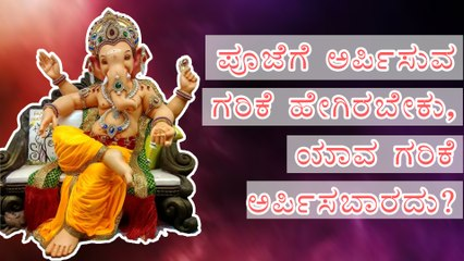 ಪೂಜೆಗೆ ಅರ್ಪಿಸುವ ಗರಿಕೆ ಹೇಗಿರಬೇಕು, ಯಾವ ಗರಿಕೆ ಅರ್ಪಿಸಬಾರದು? Garike For Ganesha | Boldsky Kannada