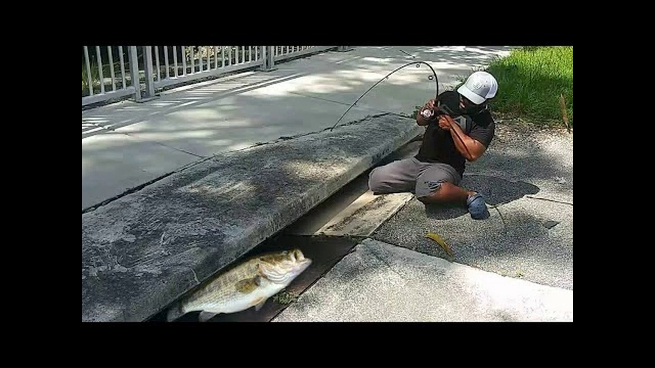 SEWER FISHING for GIANT Fish!