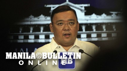 'No one can question Duterte's appointment of Cardema as NYC commissioner' — Roque