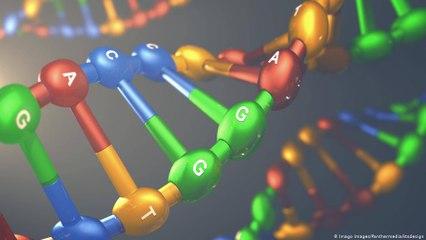 ما هي الجينات؟
