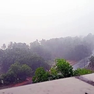 Rainy day time lapse video