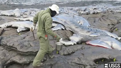 Un géologue récupère de la lave