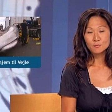 Hvalen hjem til Vejle | Finhvalen | 28-06-2010 | TV SYD @ TV2 Danmark