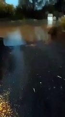 Inondations dans le village de Béclers, le 13 août 2020