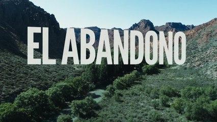 BAMBI - EL ABANDONO