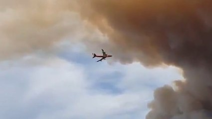 Plane disappears into cloud of wildfire smoke