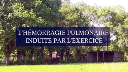 Hémorragie pulmonaire induite par l'exercice (HPIE)