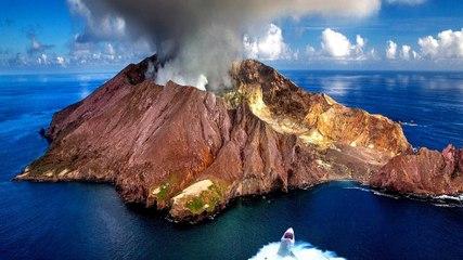 Tiburones que viven dentro de un volcán activo desconciertan a los científicos