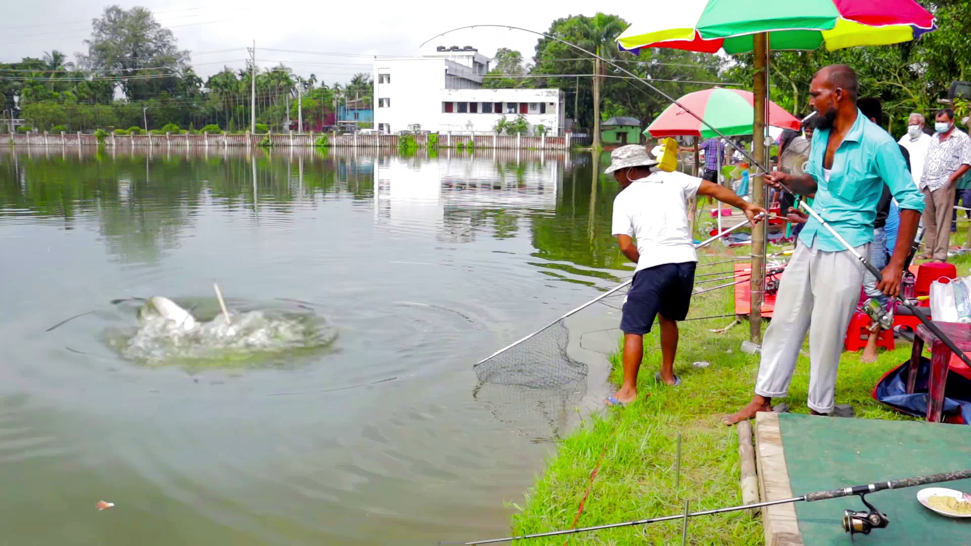 Amazing Fish Hunting | Monster Amazing Fish Catching by Fishing Rod in Village Pond
