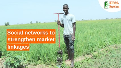 Burkina Faso: Social networks to strengthen market linkages