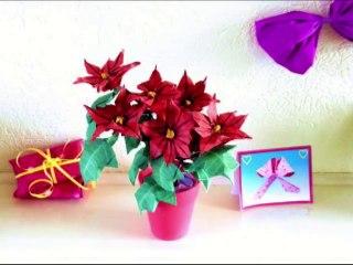Origami Poinsettia Flowers