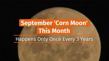 The Corn Moon