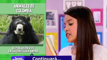 Los Amigos de Tacho   Alanna, Juancho y los animales de Colombia