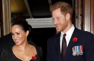 ヘンリー王子夫妻、主催の慈善イベント中止を決定
