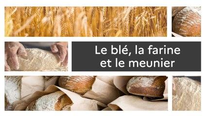 Un produit, un territoire : Le blé, la farine et le meunier