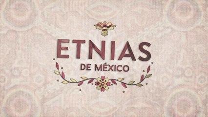 Etnias de México - Tzotziles