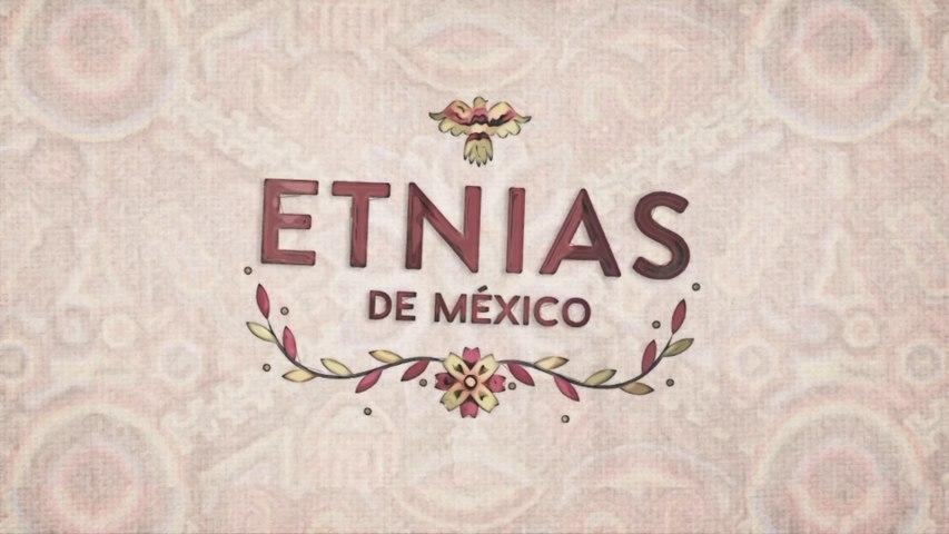 Etnias de Mexico - Zapotecas