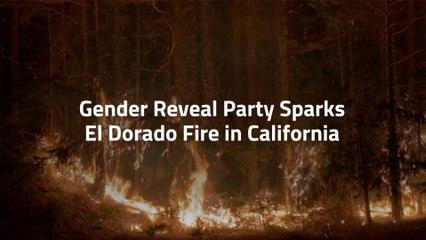 Gender Parties Are Dangerous