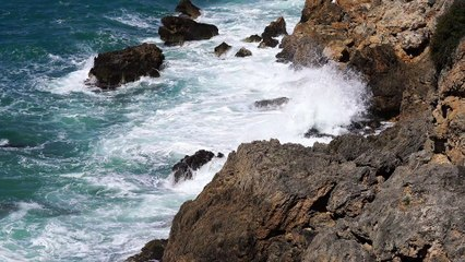 Rock at the shore beach