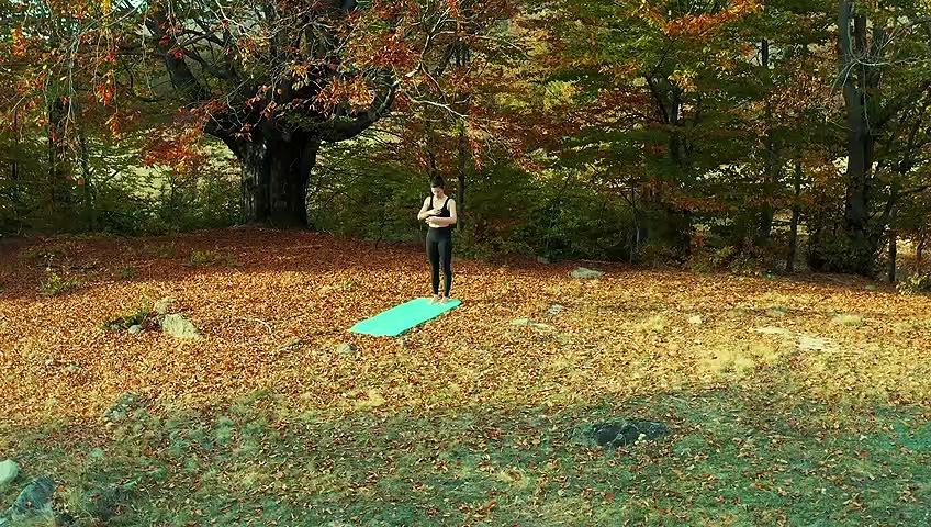 Young Woman – Pilates Workout – Nature – yoga – Workout .