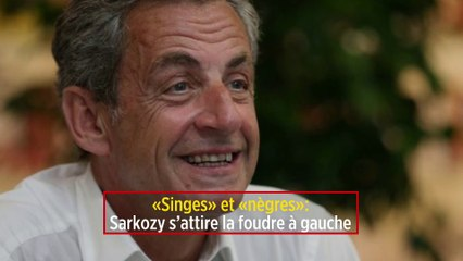 """""""Singes"""" et """"nègres"""": Sarkozy s'attire la foudre à gauche"""