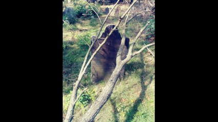 Devastation at Noroton - Gallo Family Ghost Hunters -  Featurette