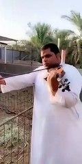Imiter le beuglement d'une vache au violon