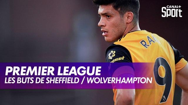 Les buts de Sheffield / Wolverhampton