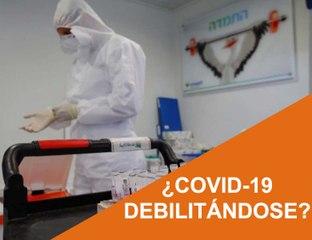 Cápsula 38 - ¿COVID-19 Debilitándose?