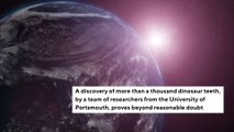 teeth-discovery-reveals-giant-dinosaur-lived-in-water