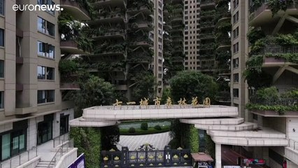 شاهد: حين تتحول النباتات إلى نقمة في مشروع مدينة خضراء في الصين