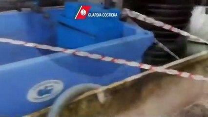 """Puglia: titolare ristorante rischia arresto per aver spacciato pangasio per """"pesce persico"""". Nel barese  sequestrato anche pesce è scaduto, multa da 4500 euro a sala ricevimenti"""