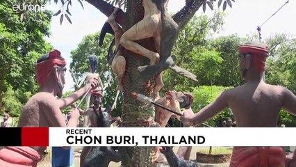 Korku, ibadet ve eğlencenin harmanlandığı Bangkok'un tapınakları