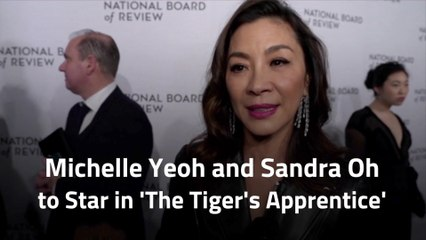 The Stars Of 'The Tiger's Apprentice'
