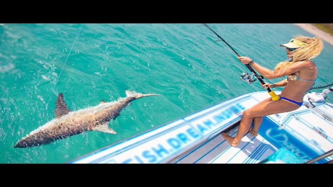 Sight Casting BIG BAIT to Blacktip Sharks in Crystal Clear Water