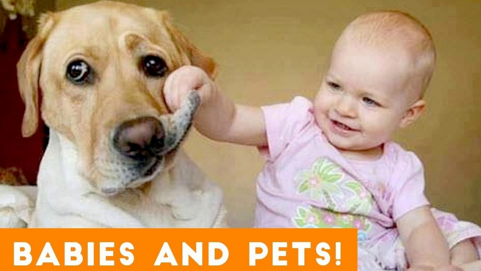 Most Adorable Animal and Baby Compilation 2018 _ Funny Pet Videos