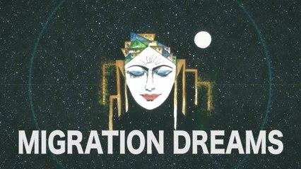 Voyage to Dreams - Migration Dreams   Engin Bayrak (Official Audio)